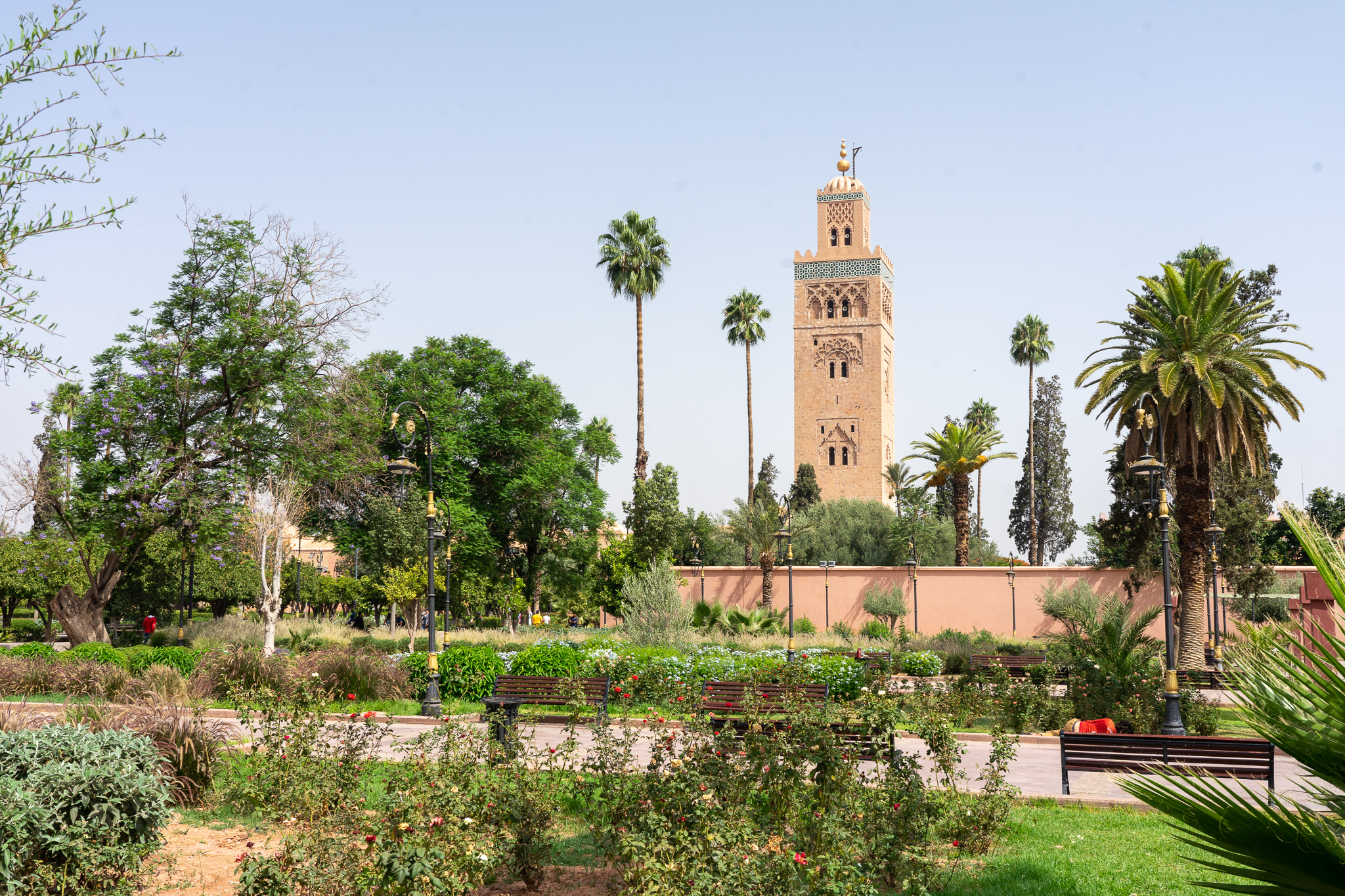 Marrakesh and Essaouira: From the Desert to the Sea in Morocco